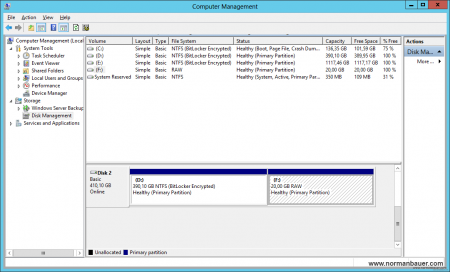 Disk Management - Volume with raw file system